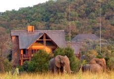 Kololo Game Reserve, Limpopo Tourism Agents