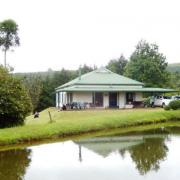 Nooyensboom, Magoebaskloof, Limpopo Tourism Agents